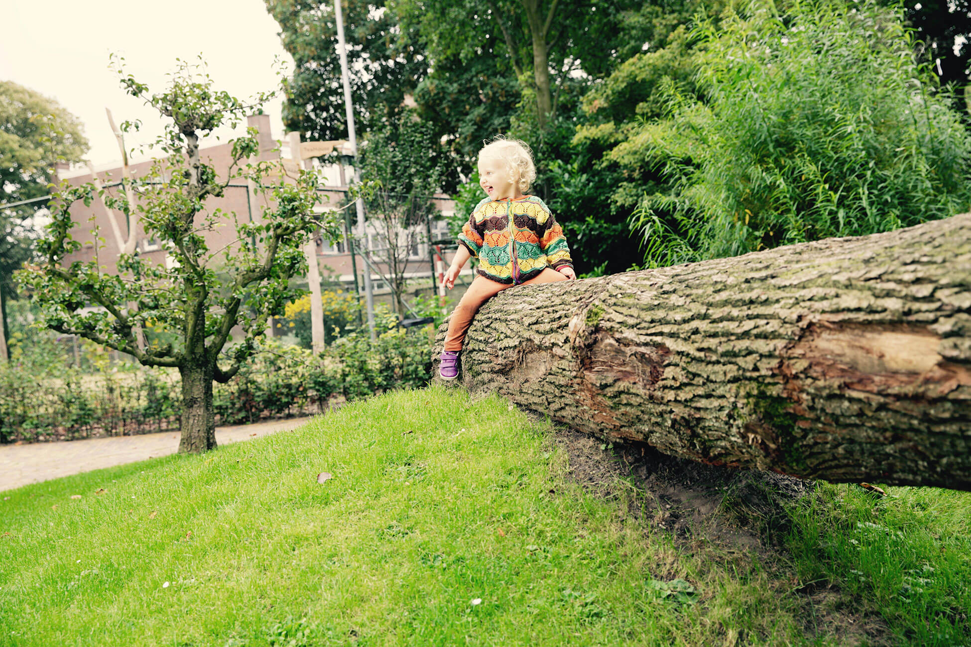 boomstam natuurspeeltuin