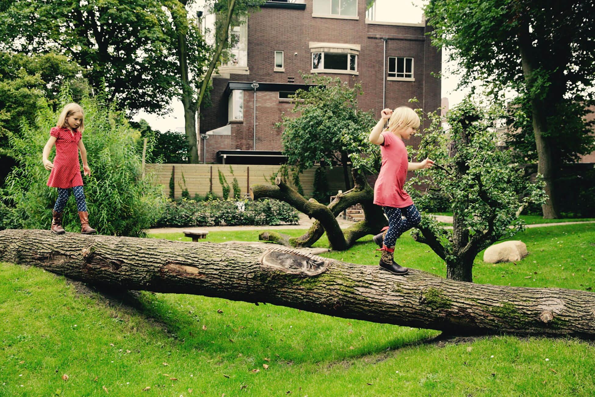 boomstammen lopen