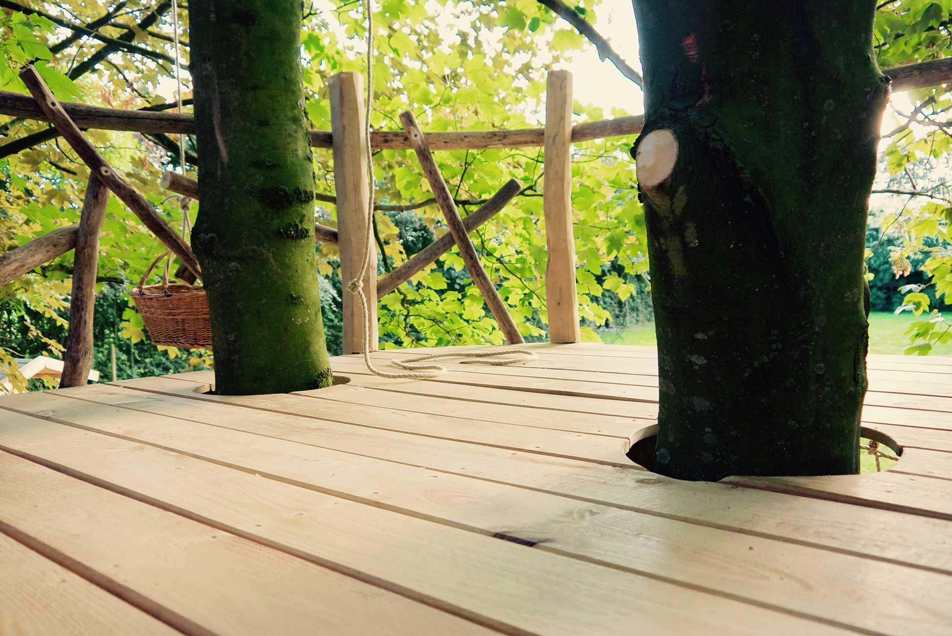 platform in de bomen